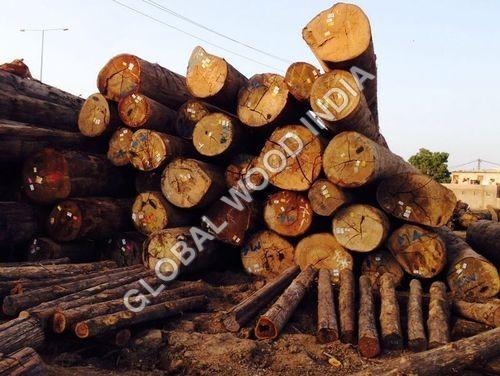Kapur Logs Timber