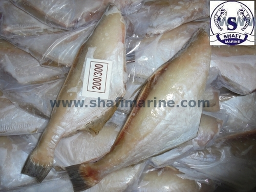 Frozen Leather Fish