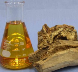 SANDAL WOOD OIL