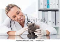 Veterinary Pcd Pharma in Bihar