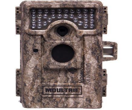 Trap Cameras
