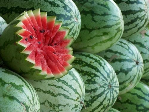 Organic Watermelon Seeds