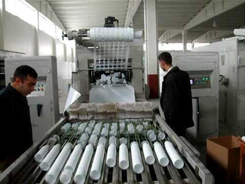 PVC PET EPS HIPS DIES MOULD & MACHINERY MANUFACTURER