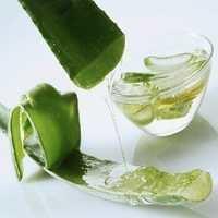 Aloe Vera Extract Capsule