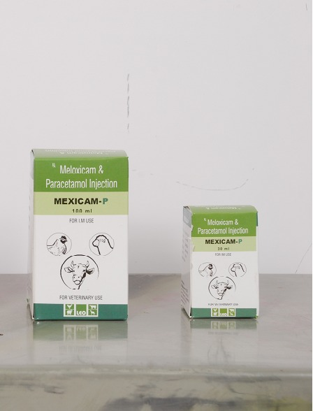 MELOXICAM & PARACETAMOL Injection