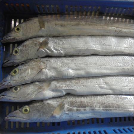 Dried Frozen Sea Foods