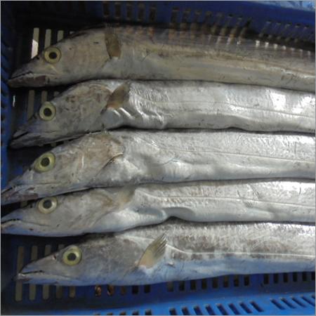 Marine Frozen Sea Foods