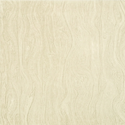 R-Ronots Vitrified Tile