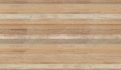 600x300 Matt Finish Wall Tile