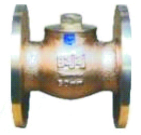 Horizontal Lift Check Valves Flanged ISI