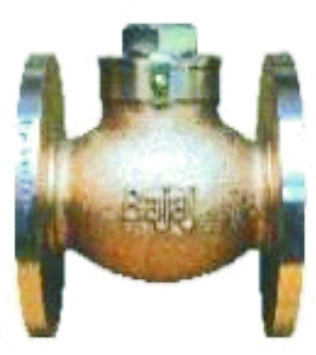 Horizontal Lift Check Valve Flanged IBR