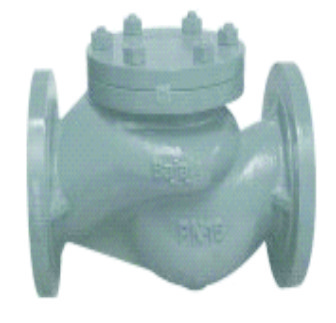 Cast Iron Horizontal Lift Check Valve IBR