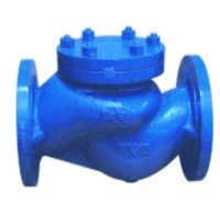Cast Steel Horizontal Lift Check Valve IBR