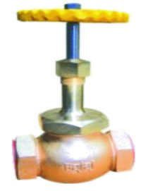 Union Bonnet Globe Valve Heavy