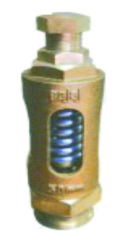 BAJAJ  Bronze Spring Relief Valve (Straight Type)