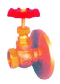 BAJAJ  Globe Valve Mixed End