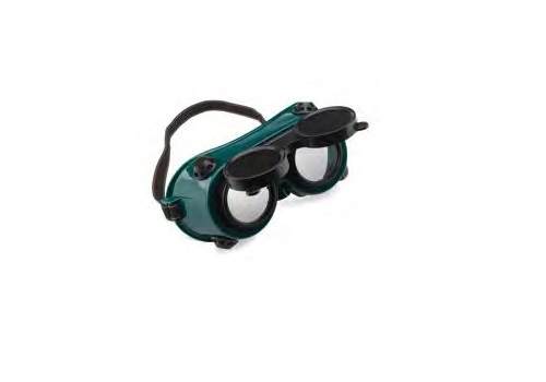 Safety Goggles G250
