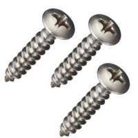 Phillips Screw
