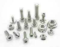 SS 202 Fasteners