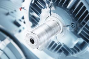 Manual Low Voltage Motors