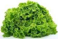 Lettuce Vegetables