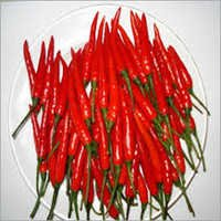 Fresh African Chili Pepper
