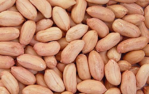 Indian Peanut