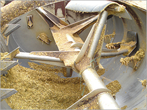 Dairy Feed Concentrate