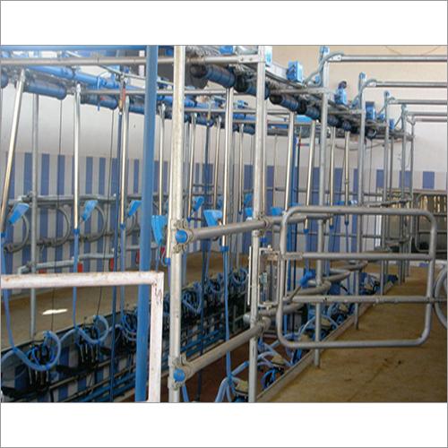 Herringbone Parlour Milking Systems