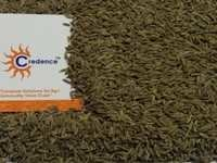 99% Singapore Quality Cumin Seeds
