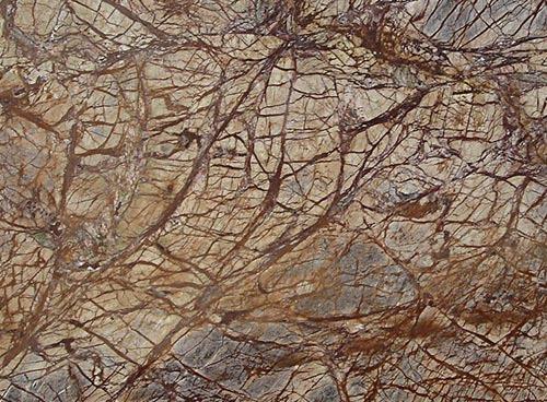 Rainforest Brown Marbles