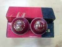 -PILOT PS Cricket ball