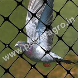 Pigeon Shade Net