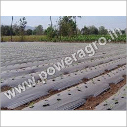 Agriculture Packaging Films