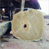 Yellow Meranti Log