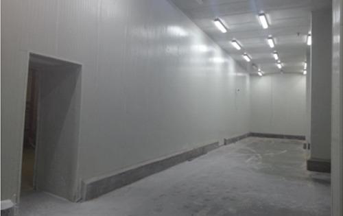 Cold Room Polyurethane Panel
