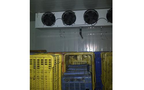Rippening Chamber Insulation