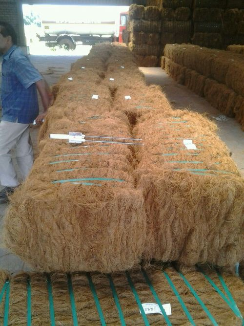Coir Fiber Blocks