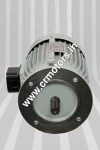 Aerator Induction Motor