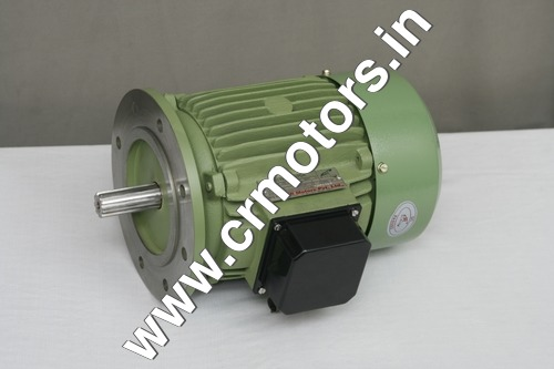 Induction Aerator Motor