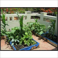 Terrace Kitchen Garden