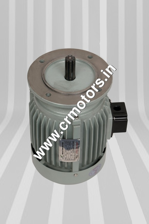 Three Phase Aerator Motor