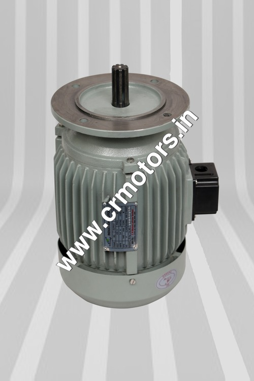 Three Phase Induction Aerator Motor