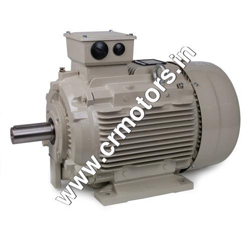 Industrial AC Motors