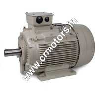 Industrial AC Motors