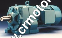 Heavy Duty Gear Motors