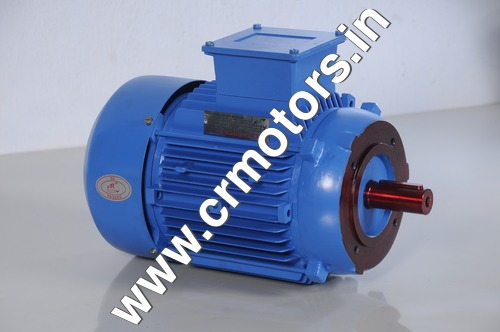Face Mount Induction Motor