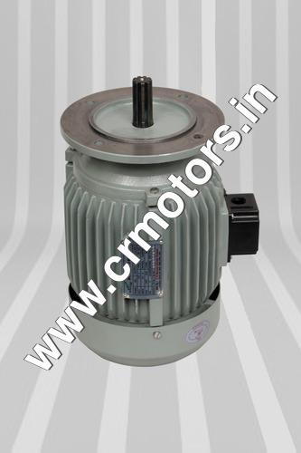 0.5HP Aerator Motor