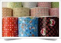 BOPP Laminated Nonwoven Fabric