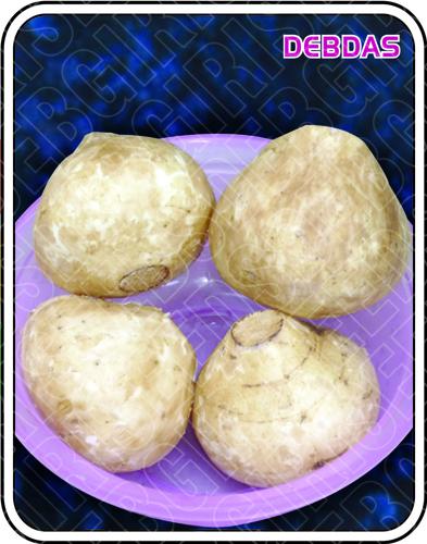 Shankalu Seeds